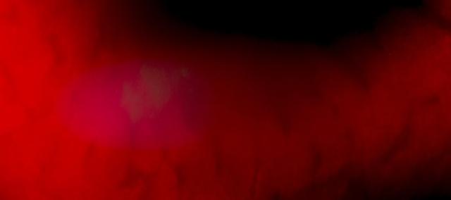 tableau-rouge-et-noir-16x36